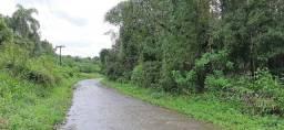 Ótima área rural com 96 alqueires em Antonina/Paraná