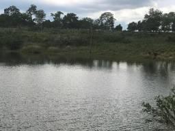 Fazenda para Pecuária com 341 ha no Município de Livramento-MT
