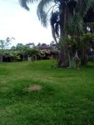 Chácara 3.000 m² - Santa Luzia - Osório - RS