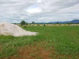 Fazenda 1.163 hectares , com 910 formado, a 105 km várzea grande