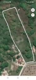 Vendo Terreno em Horizonte