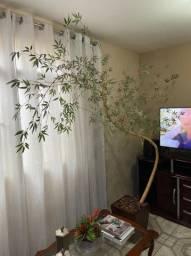 Bamboo musso com o vaso