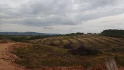 78 hectares para Oliveira e Nogueira