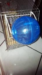 Bola de exercício para hamster