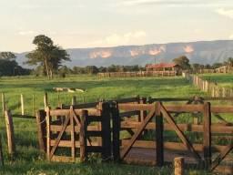 Título do anúncio: Ótima Fazenda Piscicultura e Pecuária Localizada há 50km de Cuiabá