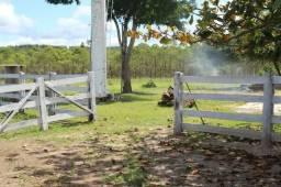 Fazenda 97 Alqueires Municipio Cocalzinho