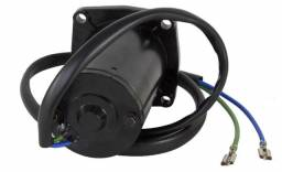 Motor Power Trim Evinrude/johnson