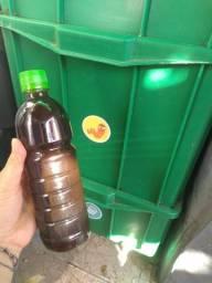Biofertilizante/ chorume de composteira
