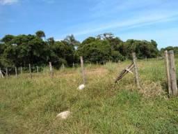 Terreno / Lote com 384 m² em Itapoá-SC, 200 metros da praia- Recanto do Farol