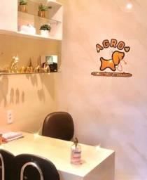 Loja está contratando médico veterinário
