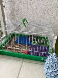 Vendo gaiola para Porquinho da Índia ou Hamster