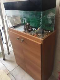 Lindo aquário completo com móvel