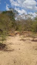 480 hectares de terras no Maranhão