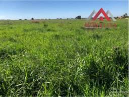 Fazenda de 245 ha na região de Janaúba