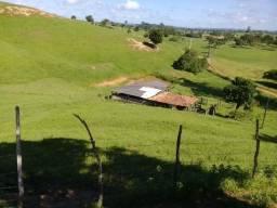 Fazenda com 160.000m² em Mata de São João - BA