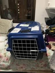 Transporte cachorro