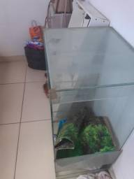 Aquario 70 litros
