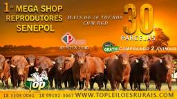 [5T6] Shop Senepol PO em 30 pagamentos -