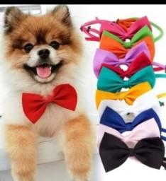 Título do anúncio: Produtos Pet Shop, queima de estoque