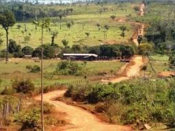 Fazenda região de Juara F0022