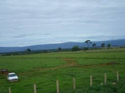Fazenda 15000 hectares em vila bela, ha 60 km ponte e Lacerda
