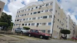 Apartamento pra alugar em tejipió