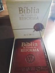 Bíblia da Reforma - Entrego