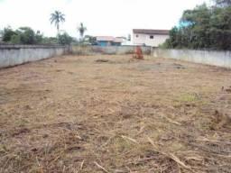 limpeza em geral jardinagem e manutenção  e horta