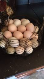 Título do anúncio: Ovos galados de índio gigante