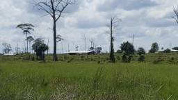 Fazenda de 2774 hectares Na região do Canta, excelente para pecuária de engorda