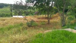 Limpeza de terreno e jardinagem
