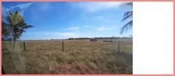 Fazenda Pecuária 1350 alqueires, fazendão