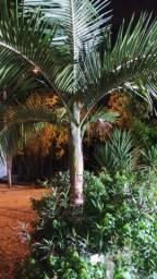 Prédio Residencial/Comercial em Porto Alegre