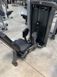Abdutor life fitness / lifefitness / hammer