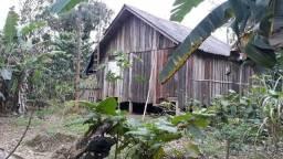 Sítio perto de Guaraqueçaba