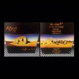 Vinil LP Música Rock Retrô Vintage