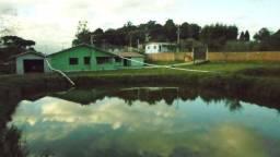 Chácara medindo 12.000m² com casa na Lagoa grande - Araucária