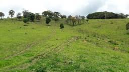 Fazenda no município de Itapeva MG