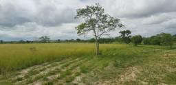15 tarefas no povoado da Izabel há 07 km da cidade
