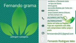Belo Jardim gramas verdes para toda necessidade