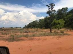 1000 hectares,Diamantino-MT,180 km Lucas,cerradão, 11 km MT- 249, Permuto Imóveis em Lucas