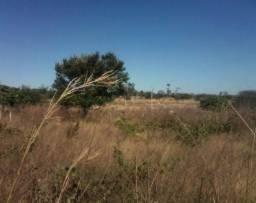 Excelente Terreno Rural em Floriano/PI