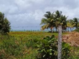 Terreno a BEIRA MAR em Japaratinga