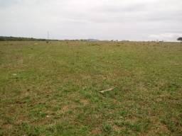 Fazenda 14 alqueires plana