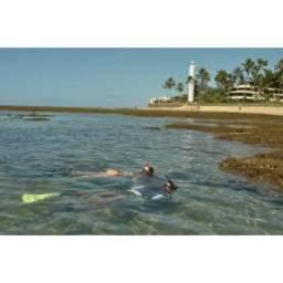 Loteamento - Condomínio Venda Praia do Forte. #Denise Leal *