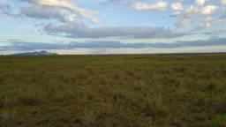 Fazenda de 5400 hectares Amajari, ler a descrição do anuncio