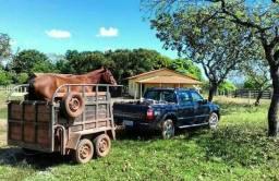 Linda fazenda no município de Dois Irmãos Tocantins
