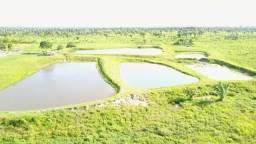 Oportunidade Única - Vendo Fazenda 1000 ha