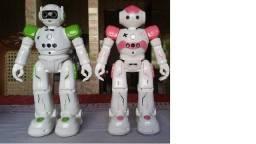 Brinquedos Diversos (R/C)