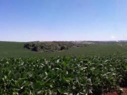 Fazenda de 585 alqueires, excelente para agricultura com pivô (Nogueira Imóveis Rurais)